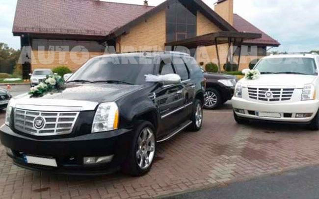 Аренда Cadillac Escalade на свадьбу Харьков